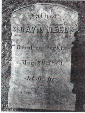 REED-DAVID